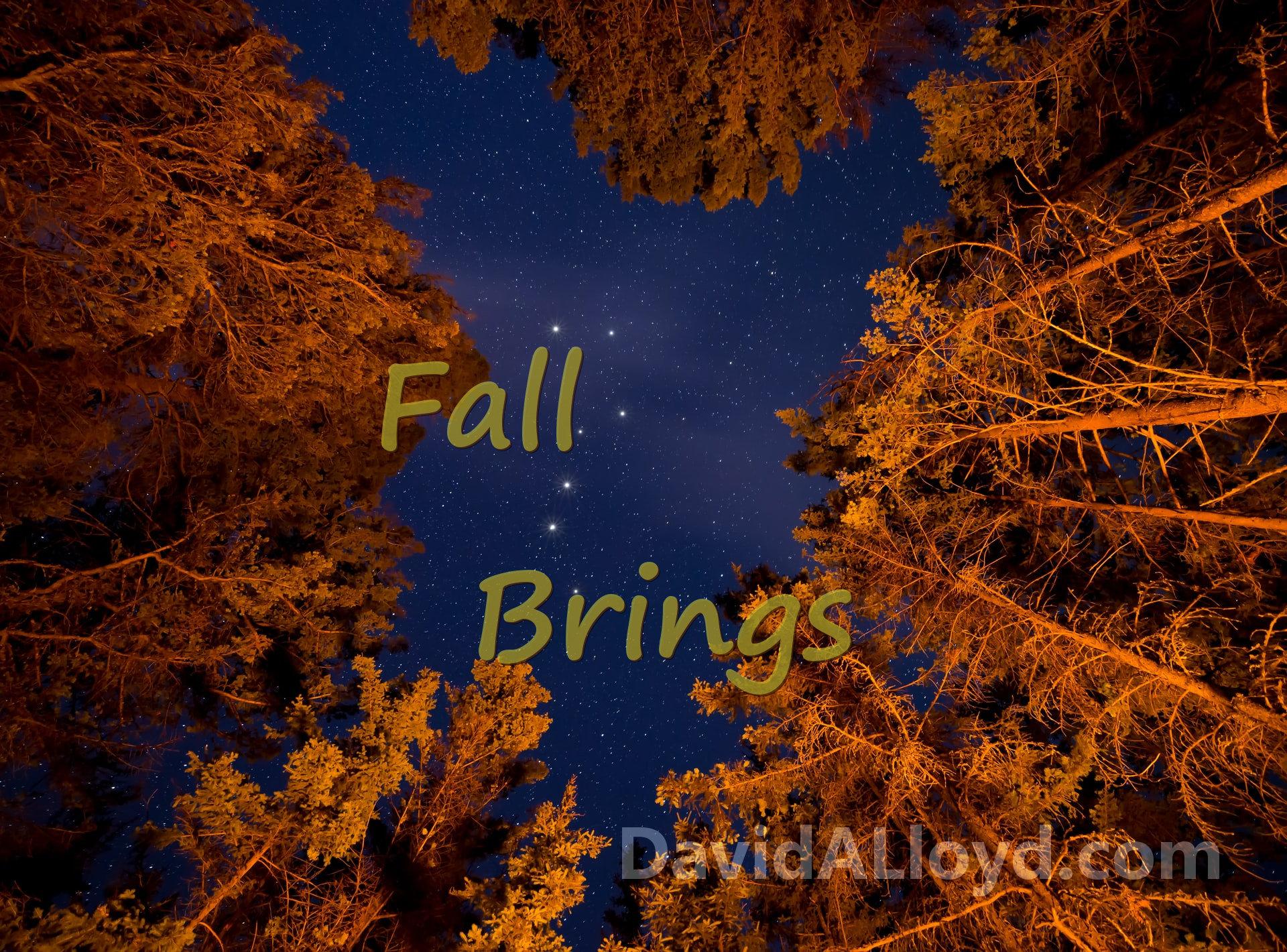 Fall Brings