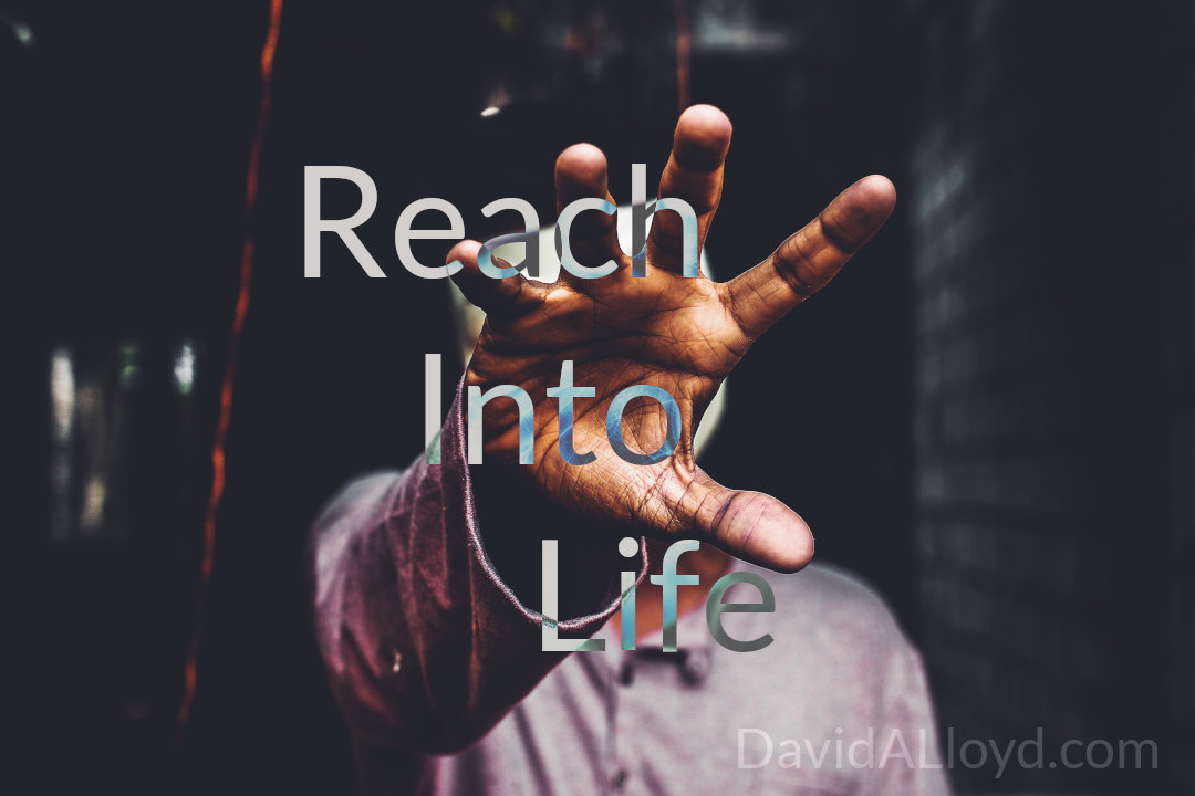 Reach Into Life